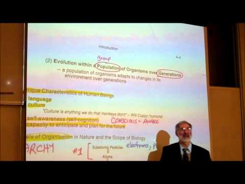 BIOLOGY; INTRODUCTION; PART 3; Characteristics of Living Things; by Professor Fink