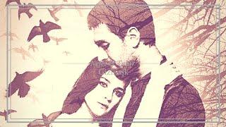 Nefes  Tahir - Gizli aşk  Sen Anlat Karadeniz