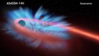 Destroyed Star Rains onto Black Hole, Winds Blow it Back