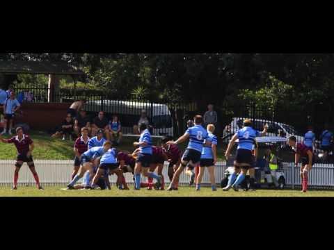 Joeys 1st XV vs Marist Canberra