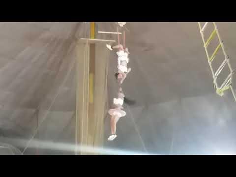 Gemini circus agra