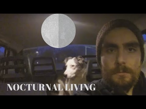 I Am Nocturnal