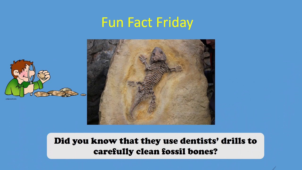 Fast Fact 3/12/21