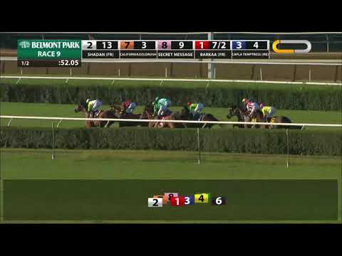 Californiagoldrush - 2018 - The Sands Point Stakes