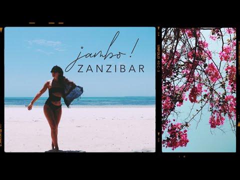 JAMBO ZANZIBAR! - Professional Wild Child Vlog
