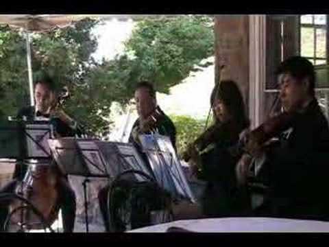 Perfect Harmony String Quartet Sample #1