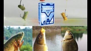 Сухое молоко для рыбалки, все секреты для рыбалки и ловли рыбы, добавка в прикормку своими руками