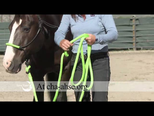 Julie Goodnight: Quick Tip How To Hold the Lead Rope, CHA