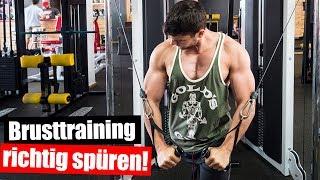 SO und NICHT anders die Brust trainieren! - Fitness Vlog