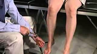 Assessment - Motor - Stretch or Deep Tendon Reflexes [Patellar or Knee]