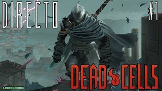 Vídeo Dead Cells