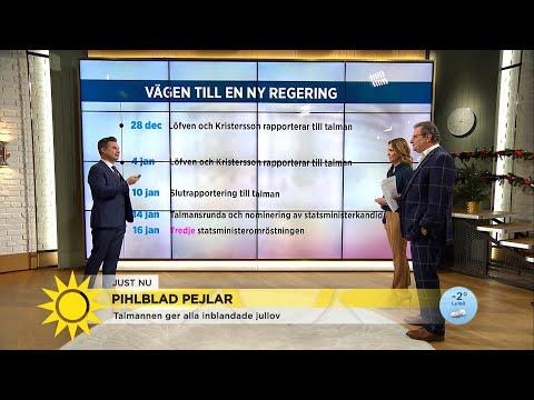 Här är stegen mot ny regering – innan nyval utlyses  - Nyhetsmorgon (TV4)