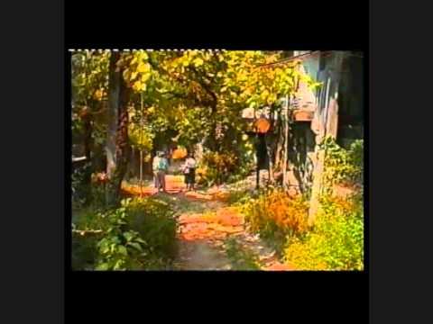 SANTA MARTA DO BOURO. AMARES. MINHO. RAÍZES II - DOMINGOS SILVA VIDEOS - 4140