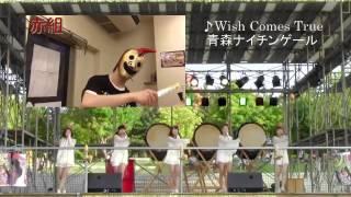 青森ナイチンゲール☆赤組親衛隊.