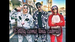 ESTOY COMO UNA CABRA!!!!   Tu no metes cabra remix (parodia)