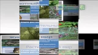 Презентация на тему Заповедники и национальные парки России и мира