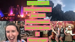 DISNEY WORLD VLOGS JUNE 2018| DAY 2 PART 2 ANIMAL KINGDOM, EVEREST IN THE RAIN & RIVERS OF LIGHT