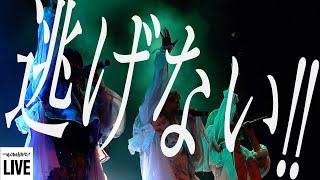 ゆるめるモ!(You'll Melt More!)『逃げない!!』(7周年イベント「ゆるめる007」 Live Version)