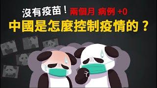 沒有疫苗! 中國是怎麼控制疫情的?