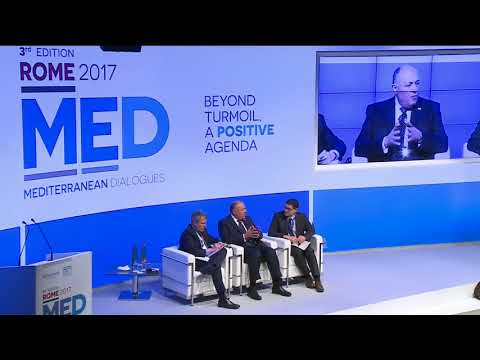 MED 2017 - A View from Egypt with Sameh Hassan SHOUKRY