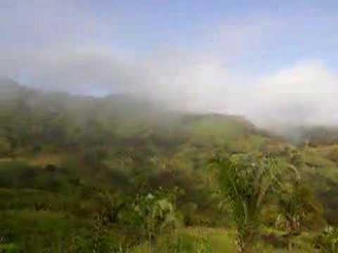 Panama Chiriqui Rain Forest www.ati.travel