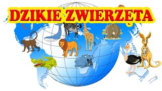 🦁 Zwierzęta dzikie \ Film edukacyjny dla dzieci \ Odgłosy zwierząt Afryki