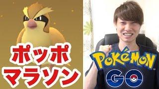 【ポケモンGO】遂に待望のリリース!序盤のおすすめトレーナーレベル上げ方法ご紹介【Pokemon GO】ポッポマラソン