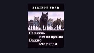 Download Blatnoy udar Official Про друзей  Live Mp3 and Videos