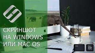Как сделать скриншот на компьютере или ноутбуке с Windows или MacOS (hotkeys, программы) 💻⌨️🖼️