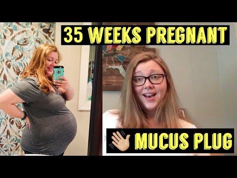 35 WEEKS PREGNANT UPDATE | LOST MY MUCUS PLUG | INSOMNIA