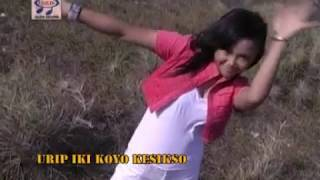 Top Hits -  Mia Ms Janjine Official Music Video