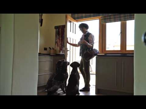 Training German shorthaired Pointers manners & getting your dog to listen
