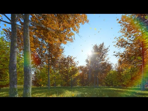Relaxing Music with Nature Sounds for Babies - 1 hour of lullaby with birds singing -