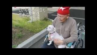 http://ameblo.jp/hanachan11117/ いつも一緒にすごしているふたりが、...