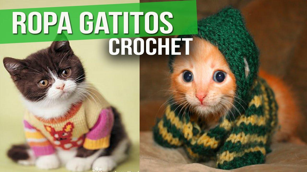 Ropa Para GATITOS - Tejida a Crochet y dos Agujas ( ideas y diseños ...