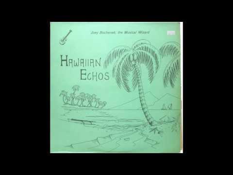 Joey Bochenek - Hawaiian Echoes [LP]