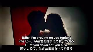 ちょっとエロい刺激的なラブソングです。 #マルーン5 #Maroon5 #animals.