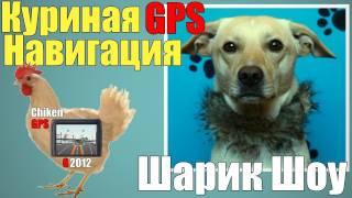 Шарик Шоу - Куриная GPS навигация (выпуск 25)