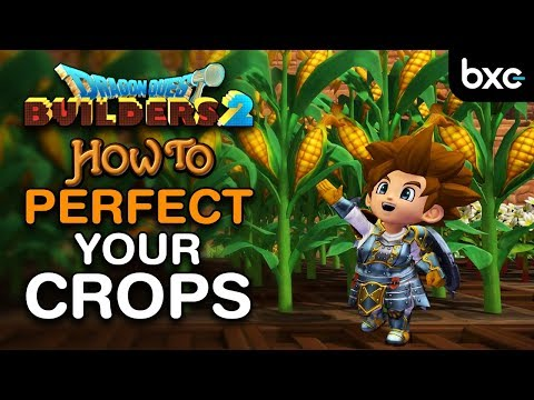 DQB 2 - How To Make The Most Efficient Crop Fields
