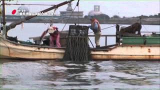 三重県の漁業 11 採貝漁業(桑名市赤須賀)