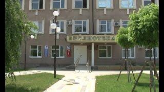 С днём библиотекаря! 27 мая отмечается Всероссийский день библиотек.