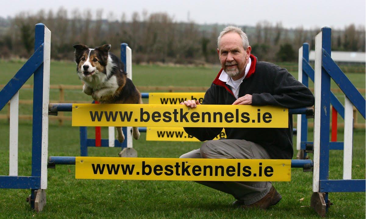 Dog Boarding Dublin
