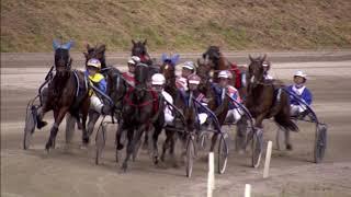 Vidéo de la course PMU PRIX DE HALMSTAD