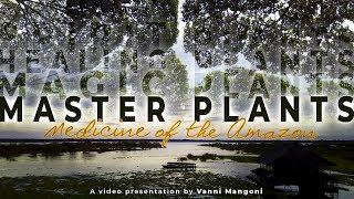 MASTER PLANTS - Medicine of the Amazon