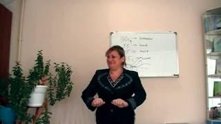 Программа снижения веса «Гармония Веса». Отзыв #1 Носковой Елены.