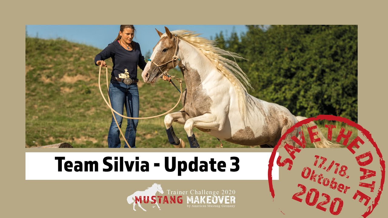 MUSTANG MAKEOVER 2020 - Team Silvia (TAG 4913) - Update 3