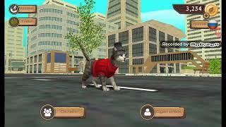 Прохождение игры симулятор кошки онлайн кет сим с другом