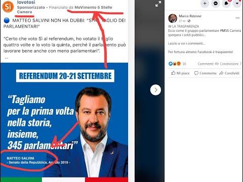 """M5S: """"Post su referendum con Salvini finanziato da gruppo Camera Movimento"""" Anche Salvini vota Si"""