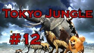 Tokyo Jungle Ep. 12 - Floppy Ears (beagle   Survival)