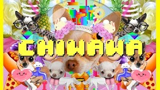 Just Dance 2016《舞力全開 2016》Chiwawa Official Music Video Anne Horel - Ubisoft SEA